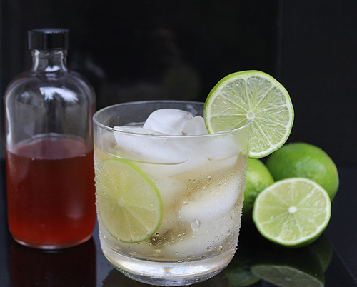 Gin with homemade tonic water