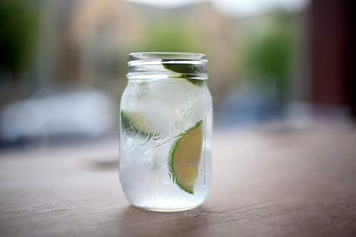 Glass of Gin and Tonic made with Cinchona Bark